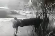 بالفيديو حقيقة ما حصل في مخيم عين الحلوة اليوم