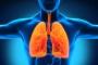 اكتشاف وظيفة أخرى للرئتين غير التنفس