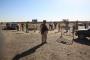 شمال سيناء بلا كهرباء وماء واتصالات منذ أسبوعين