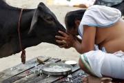 جيش الهند قلق من تزايد الاعتداءات ضد المسلمين