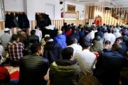 ألمانيا والعالم الإسلامي على مفترق طرق