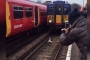 تأخر قطارات في لندن بسبب.. بجعة