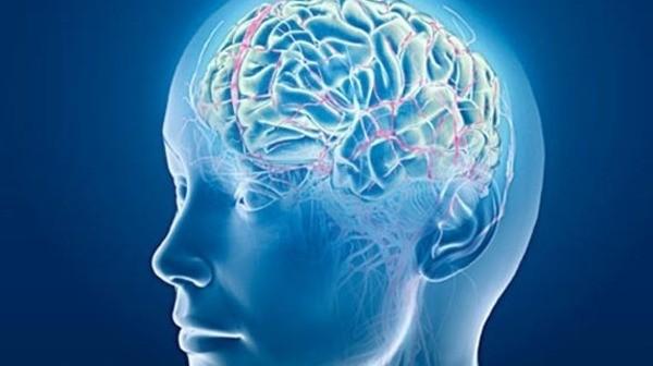 هكذا ترتفع اللياقة البدنية للمخ!