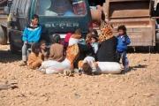 ناشطون سوريون يطلقون حملة لإلقاء الضوء على مأساة «مخيمات الموت»