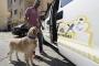 Petaxi: تاكسي لك ولحيوانك الأليف