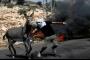 بالصورة: فلسطيني يحاول دفع حمار للابتعاد عن ساحة الإشتباك مع الجنود الإسرائيليين