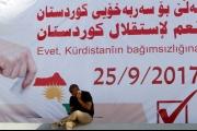 الأكراد و «داعش»: لماذا هذان الإجماعان؟