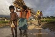 التايمز: اللاجئون الروهينجا في أمس الحاجة إلى المساعدات