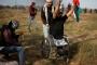 فلسطيني يتحدى إسرائيل والإعاقة.. ويسقط من أجل 'باب الأقصى'