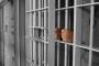 إيران.. تزايد القلق حول عدد قتلى التعذيب في السجون