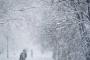 بالصور ... الثلوج تكسو أوروبا وتشل حركة طرقات وطائرات