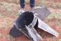 بالصور :سقوط بقايا صاروخ وشظايا في سهلي سرعين وعلي النهري في البقاع