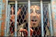 منظمة حقوقية مصرية ترصد اعتقال 19 مصرياً على خلفية الانتخابات