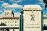 منظمة التجارة العالمية في دائرة الخطر؟