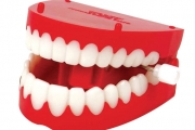 متى تبدأ العناية بصحة الفم والأسنان؟