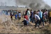 صمود غزة وانتفاضة السلطة
