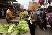 صندوق النقد يضغط على الأردن لزيادة الضرائب