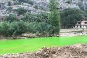 بالصورة مياه مجرى  نهر الكلب بالاخضر