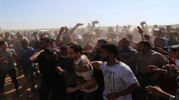 اتصالات حماس والاستخبارات المصرية تنتهي بتخفيف أعداد المتظاهرين