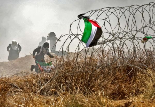 القدس وغزة.. حزن ما بعد النكبة
