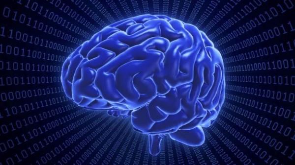 إصلاح خلايا المخ 'ممكن'