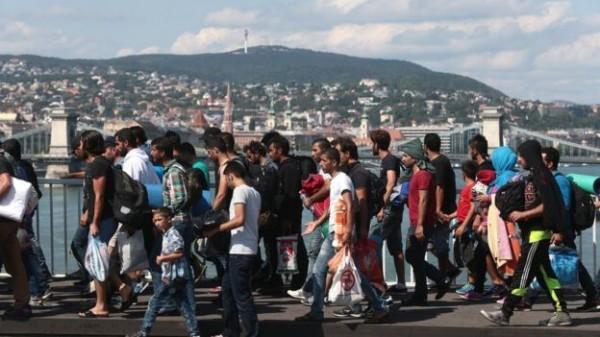 'إيقاف المهاجرين'
