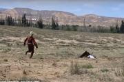 بالفيديو ... صقر ينقضُّ على طفلة عمرها 8 سنوات، ويحاول افتراسها!