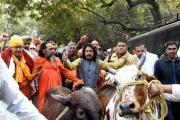 بتهمة انتهاك 'قدسية' البقر.. هندوس يضربون مسلما حتى الموت