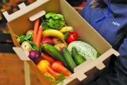 «سلال قمامة ذكية» في الحرب على هدر أطعمة بـ 100 مليار دولار سنوياً