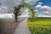 ما العلاقة بين الرأسمالية وتغير المناخ
