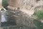 مصلحة الليطاني طالبت البلديات بمنع صب المجارير مباشرة في النهر