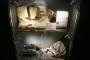 بالصور ... متحف عرفات - ذاكرة فلسطين