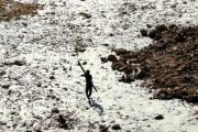 الهند ... قبيلة بدائية تقتل بالسهام سائحاً أميركياً اقترب من جزيرتها