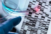ولادة أول أطفال بعد تعديل جيناتهم وراثيا