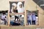 تفاصيل جديدة عن القوة الخاصة المتسللة إلى غزة تكشفها قناة إسرائيلية