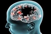 فريق بحثي أميركي يحدد الجينات المسؤولة عن «الخرف»