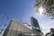 70 عاما على إعلان حقوق الإنسان.. فما أبرز مواده؟