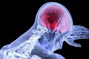 هل الجلوس أمام الشاشة مدة طويلة يغير تركيبة الدماغ؟