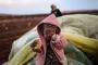 سوسيولوجيا الهشاشة والفقر: سوريا أنموذجاً