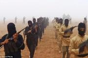 إنترسبت: معظم مجندي داعش في أميركا ليسوا مهاجرين