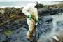 توقعات بتراجع جدوى الاستثمار في النفط الصخري