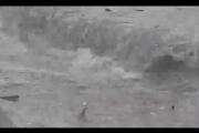 بالفيديو ... كارثة تحل بالصيادين والسكان.. ماذا حصل على شاطىء السان سيمون؟