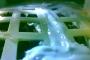 الصين تزرع أول بذرة قطن على سطح القمر