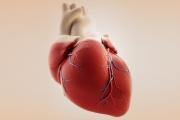 هل يستخدم الأطباء بطارية نووية في قلب الإنسان؟