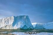 آخر مخاطر ذوبان القطب الجنوبي على الأرض.. خبراء يحذرون من تحطم الجروف الجليدية