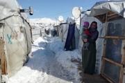المبادرة الروسية لإعادة النازحين مستمرة ... وتفعيلها بعد «الثقة»