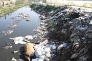 'كانديا' تلوث الليطاني وتسرق مياه اللبنانيين (1)