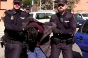 إسبانيا ... شاب يقتل والدته ويأكل من جثتها ويطعمها لكلبه