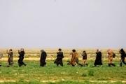 'الولايات الأمنية': استراتيجية 'داعش' الجديدة