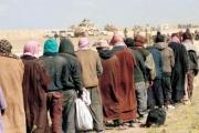 عشرة آلاف «داعشي» في قبضة «قوات سوريا الديمقراطية»